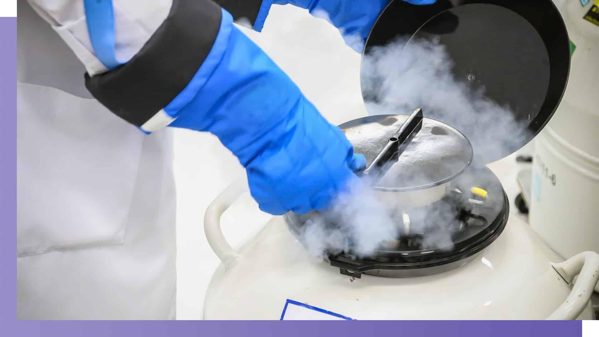 sperm cryopreservation