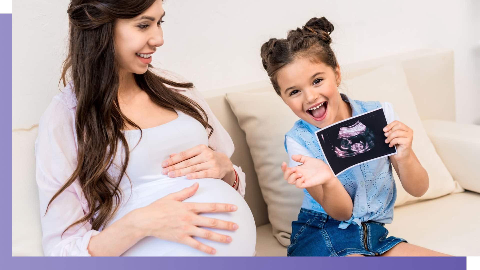 embryo vitrification