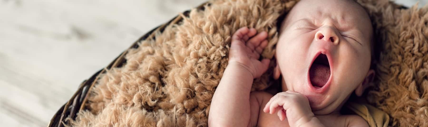 ukraine surrogacy cost